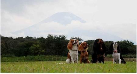 富士山の前で