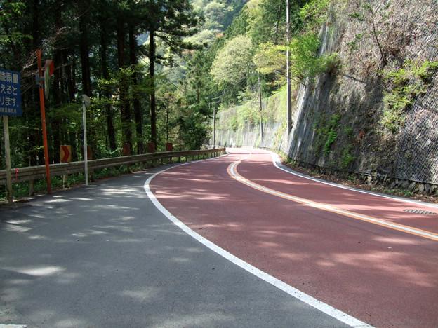 Photos: 090419_白丸ダム周辺_74