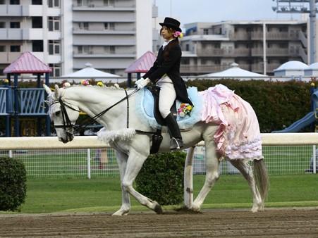 川崎競馬の誘導馬05月開催 誕生日記念レースVer-14