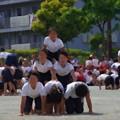 組体操 3