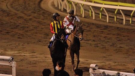 [140402大井11R東京スプリント]パドトロワ「なんか強い馬いたね・・・」セレスハント「なんだったんだろうね」