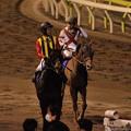 Photos: [140402大井11R東京スプリント]パドトロワ「なんか強い馬いたね・・・」セレスハント「なんだったんだろうね」