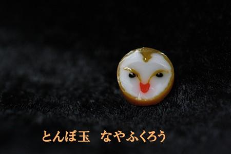 とんぼ玉 H26.5.15 2