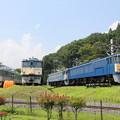 189系クハ189-506 EF63-25 EF63-24