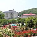 Photos: 花巻温泉バラ園・3