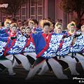 写真: 幕張Heart'S_彩夏祭2008_30