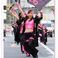 Photos: dance company REIKA組_東京よさこい2008_01