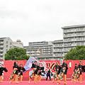 写真: 无邪志府中魁星_荒川よさこい-07.jpg