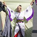 写真: ぞっこん町田'98_東京大マラソン祭り2008_20