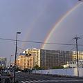 写真: 豊洲に虹が04