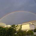 写真: 豊洲に虹が05