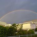写真: 豊洲に虹が06