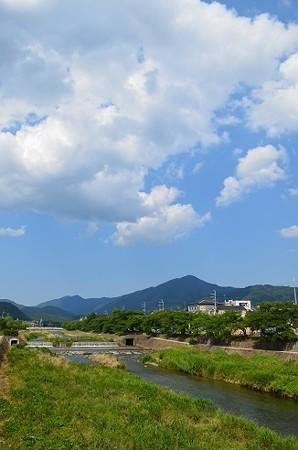 高野川にて 1