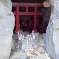 Photos: 都電荒川線_早稲田駅界隈:水稲荷神社-16富塚古墳c