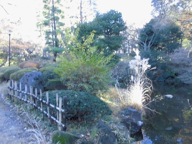 都電荒川線_早稲田駅界隈(早大側):甘泉園公園-10