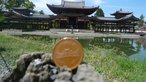 円 鳳凰 平等 10 玉 堂 院