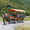 Photos: 京馬車