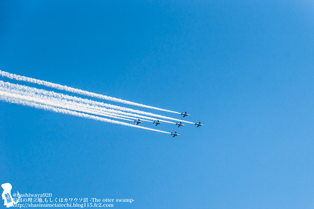 blueimpulse140531030