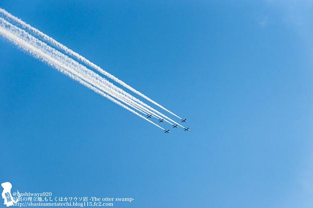 Photos: blueimpulse140531034