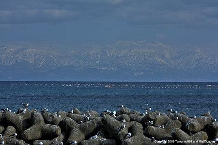 氷見海岸と立山連峰