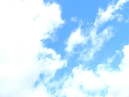 20090115の空1