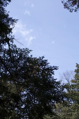2009-03-07の空4