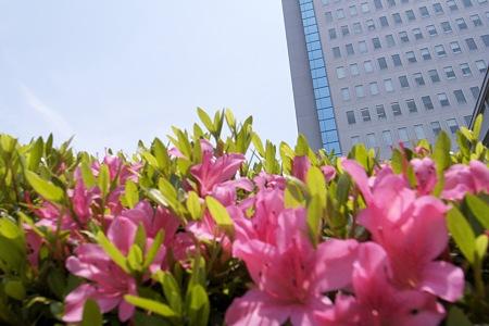 2009-05-11の空
