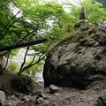 滝壺から見上げる参路