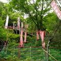 弁天堂本堂へ続く階段