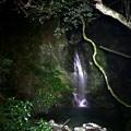 車道脇の小滝