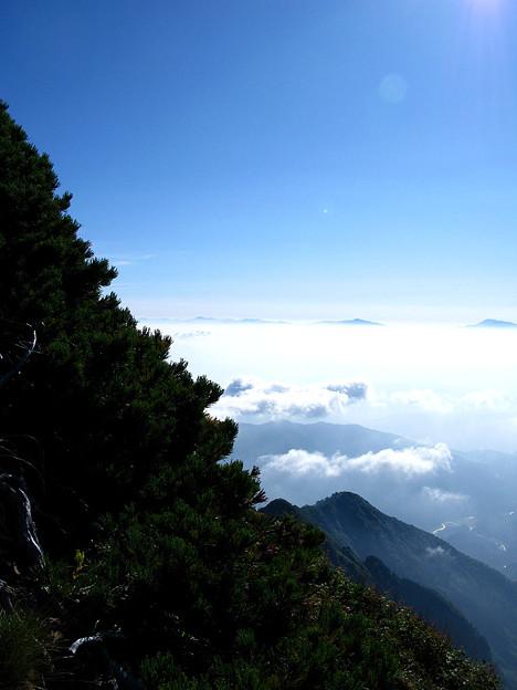 ハイマツと登る山稜