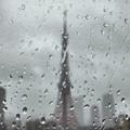 写真: 雨粒模様(1)