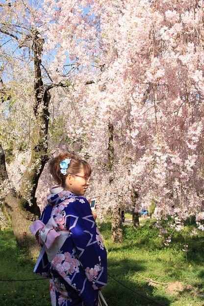 IMG_6403京都府立植物園・着物を着た女性と紅枝垂桜