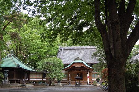 緑豊かな月窓寺