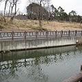 Photos: 大正地池a (2)