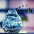 Photos: 花瓶
