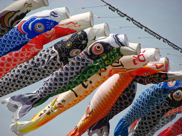 Photos: 泳げ鯉のぼり相模川
