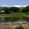 アルプスの麓で稲作農業
