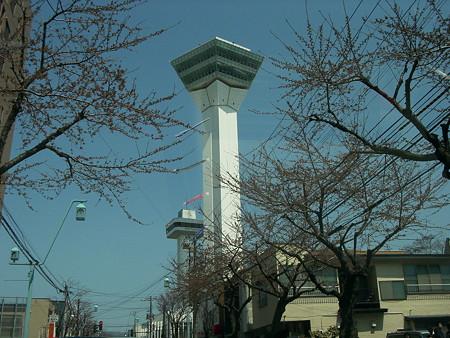 1.ダブル五稜郭タワー