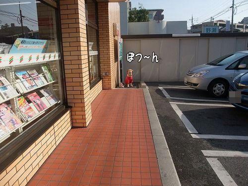 s-myu2008_1212(004)