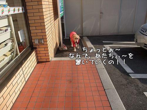 s-myu2008_1212(005)
