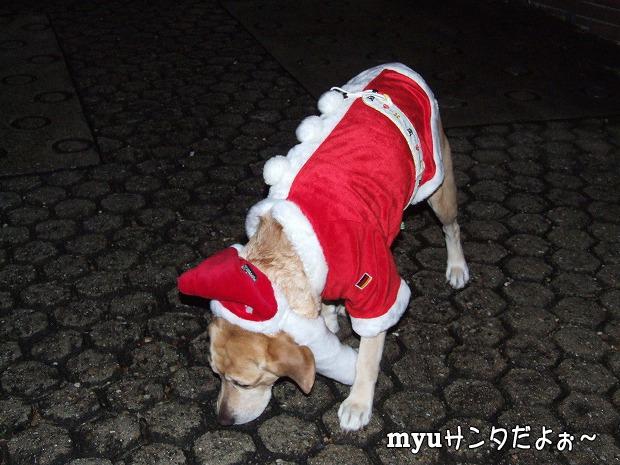 s-myu2008_1225(006)
