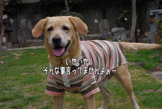 s-myu2009_0219(040)