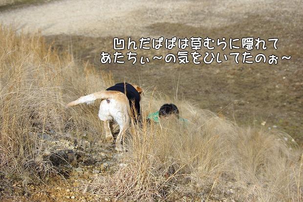 s-myu2009_0221(133)