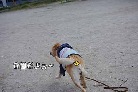 s-myu2009_0327(002)