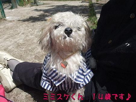 s-myu2009_0426(035)