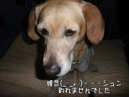 s-myu2009_0501(257)