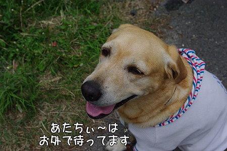 s-myu2009_0504(011)
