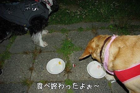 s-myu2009_0513(034)