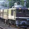 EF64 1001&EF65 501(旧型客車)